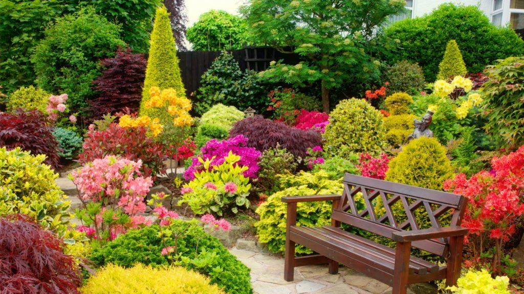ogród kwiatowy 16