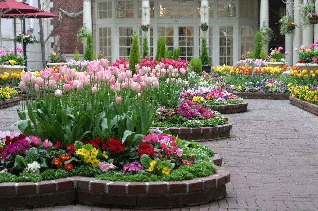 цветя garden17