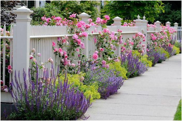 Усещането за мир и топлина се създава от красивите цветя, които растат в люляк и розови цветя за грижите.