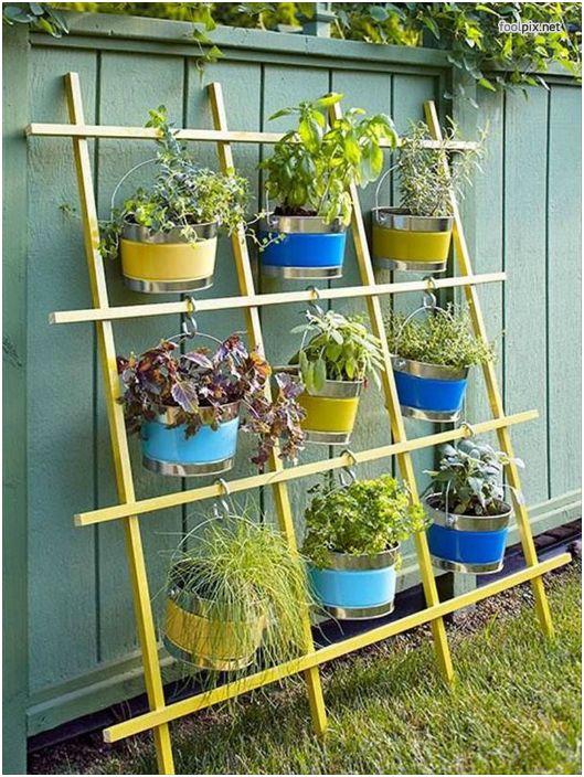 Домашна решетка с растения.
