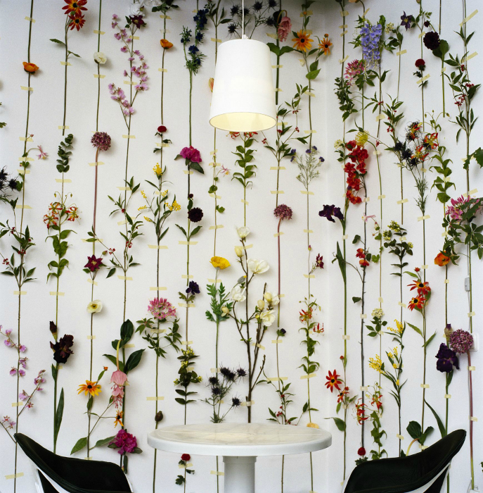Tuoreita kukkia seinillä.