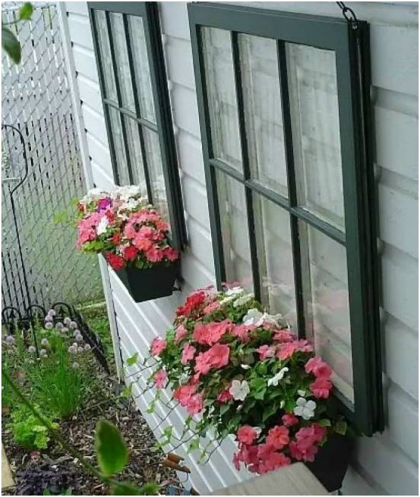 Kompozycja z okien i doniczek z kwiatami.