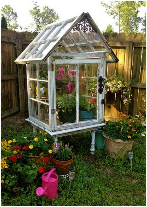 Mały `` ogród botaniczny '' ze starych okien.