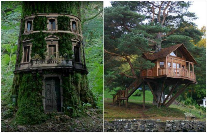 Най-красивите къщи с дървета.