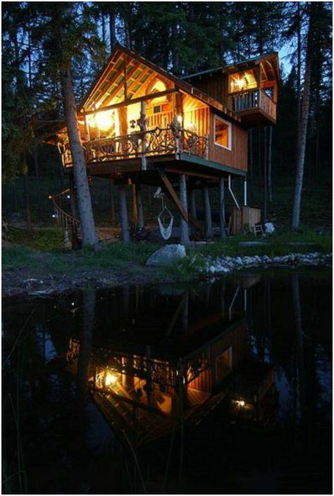 Ogromny dom mieszkalny na drzewie.