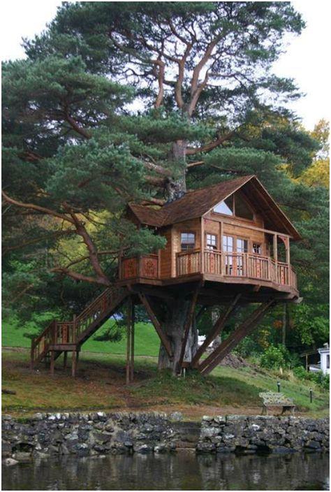 Przestronny domek na drzewie.