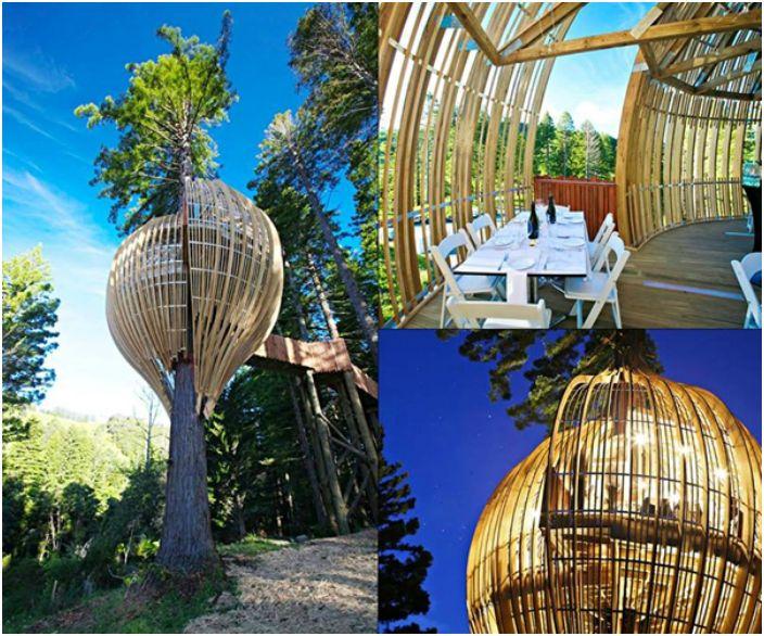Фантастичен ресторант на 10 метра височина.