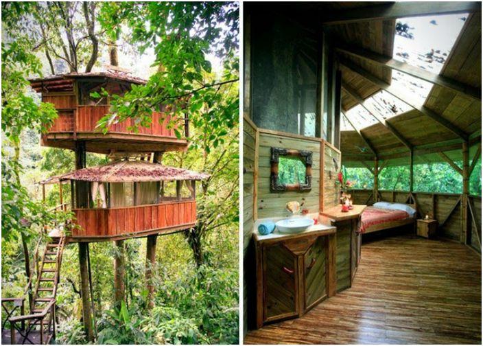 Уютна къща с дървета.