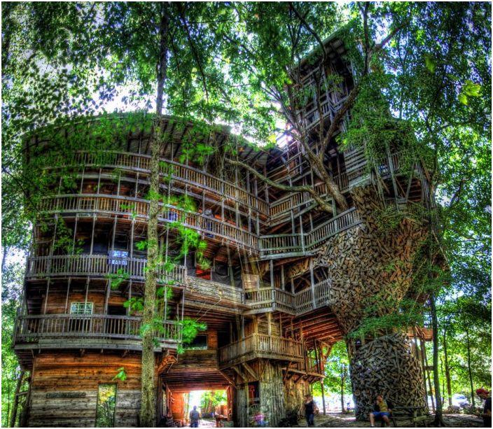 Największy na świecie 10-piętrowy domek na drzewie.