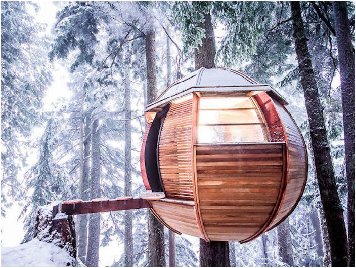 Къща-сфера на дърво.