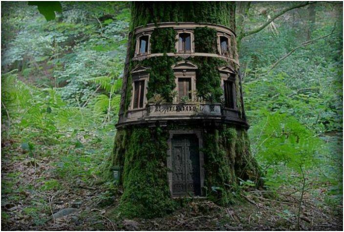 Зашеметяваща къща вътре в голямо дърво.