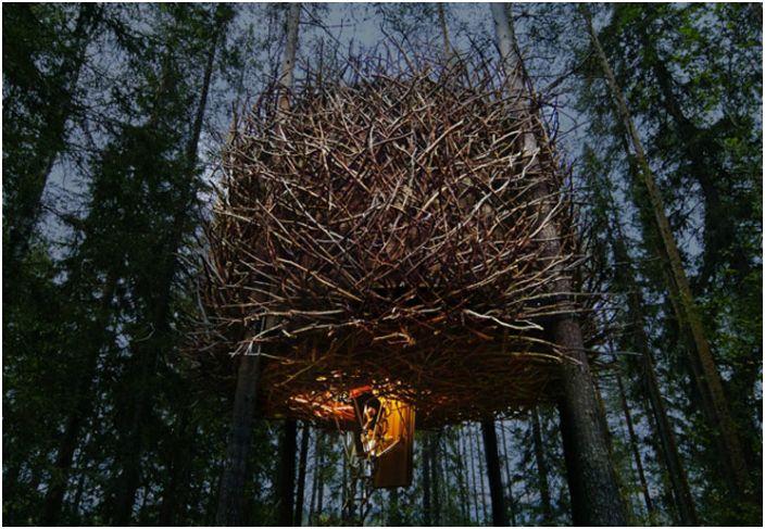 Fantastyczny pokój hotelowy na drzewie w formie ogromnego ptasiego gniazda.