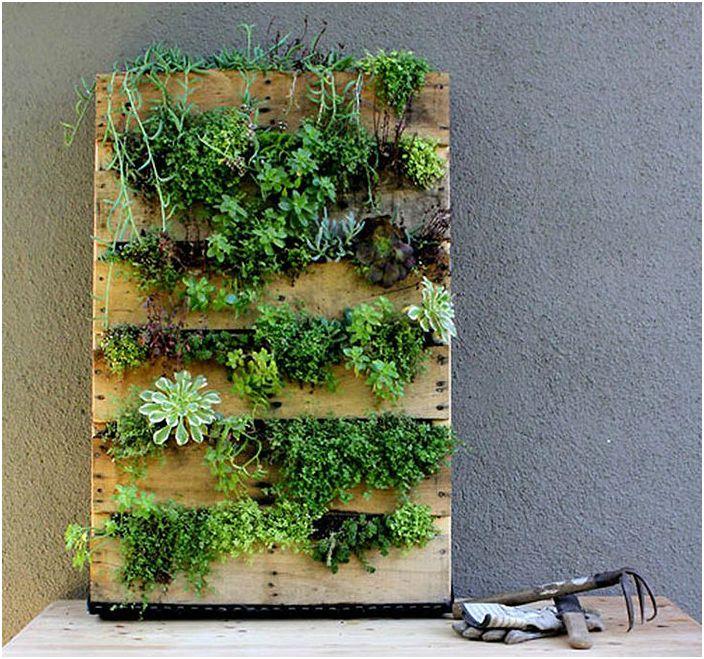Палет вертикална градина.