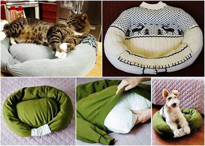 Уютно легло за четириног приятел.