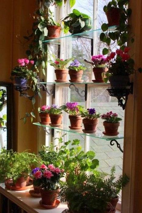 Светлое место у окна оснащено полочками, на которых удачно разместились горшочки для мини-сада.