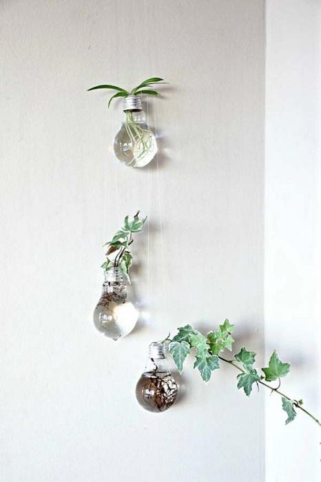 Симпатичный вариант оформления мини-сада в подвесном виде в лампочках.