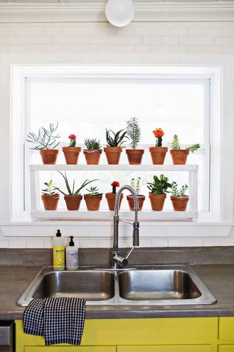 Интересный и удобный вариант оформления мини-сада на кухне придется по душе многим.