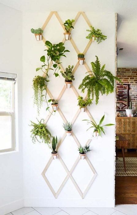 Чудесно решение за декориране на стая е създаването на висяща мини градина на стената.