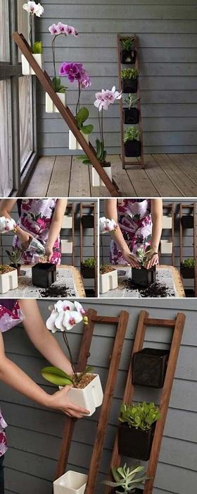 Хороший вариант создать мини-сад и разместить его необычным способом.