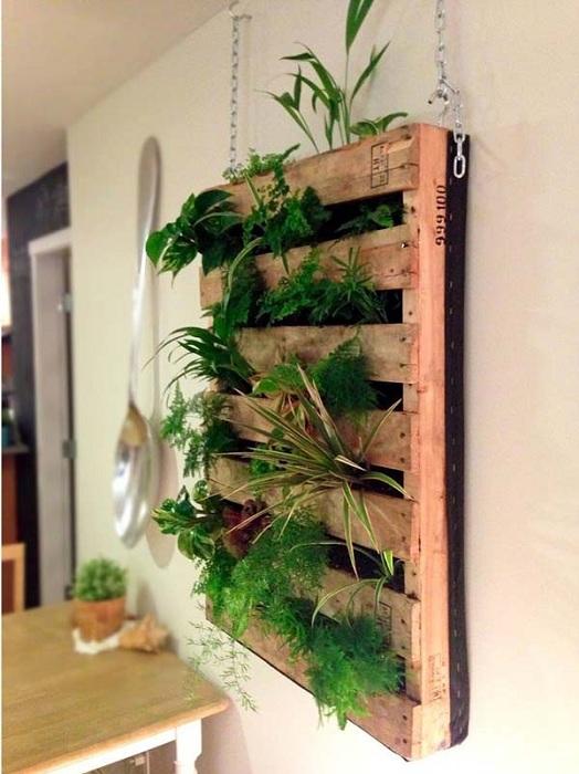 Добър вариант за декориране на мини градина на стената в евро палет.