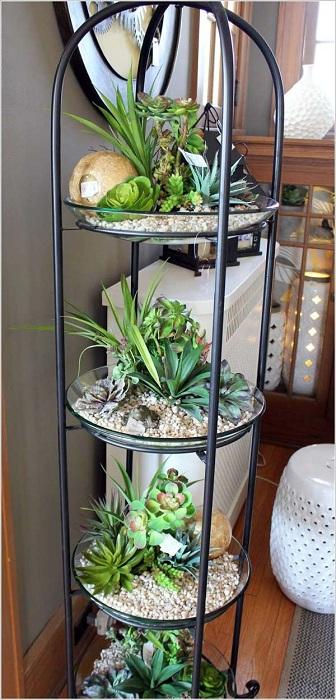 Хубав вариант за мини-градина на много нива, която ще се хареса на всеки любител на стайните растения.