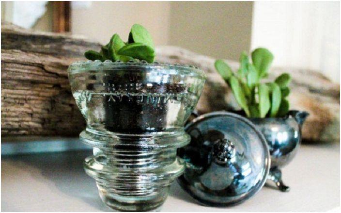Прекрасен реколта изолатор специално за засаждане на малки растения, сладко и красиво решение.