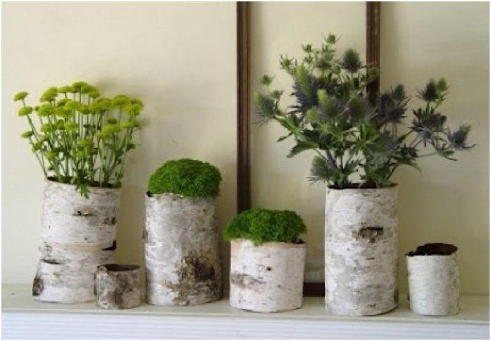 Piękny projekt cięć drzew z naturalną zielenią, który odświeży wnętrze.