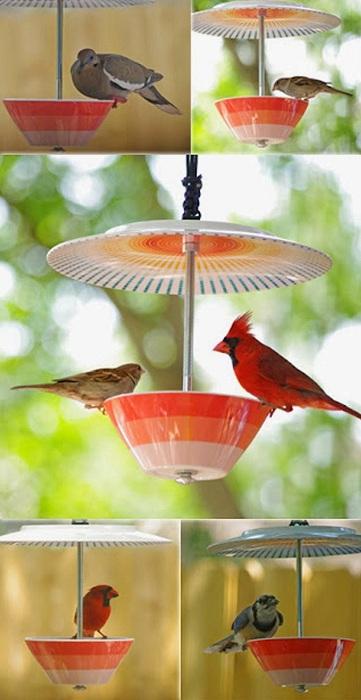 Jasne i urocze karmniki dla ptaków, które możesz zbudować własnymi rękami.