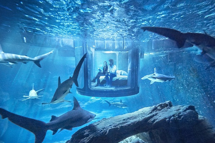 Et soverom under vann ved det parisiske akvariet.