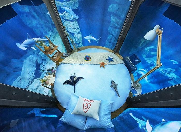 Szklana podwodna sypialnia w Aquarium De Paris.