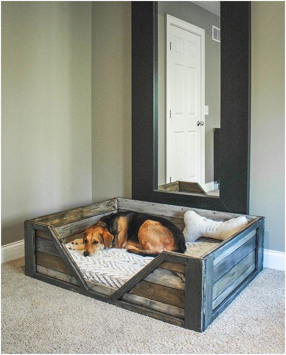 Възможно е да се създаде уютно място за пухкави приятели във всяка стая на къщата.