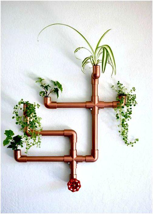 Растения в водопроводной трубе.