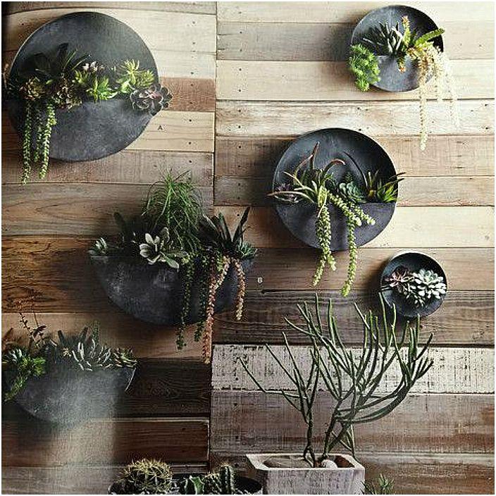 Плоские настенные плантаторы для растений.