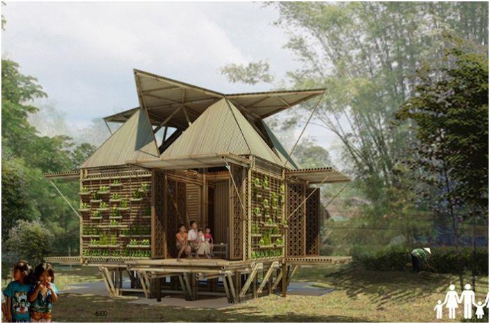 Бамбукова къща амфибия.