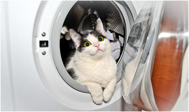 place pour machine à laver