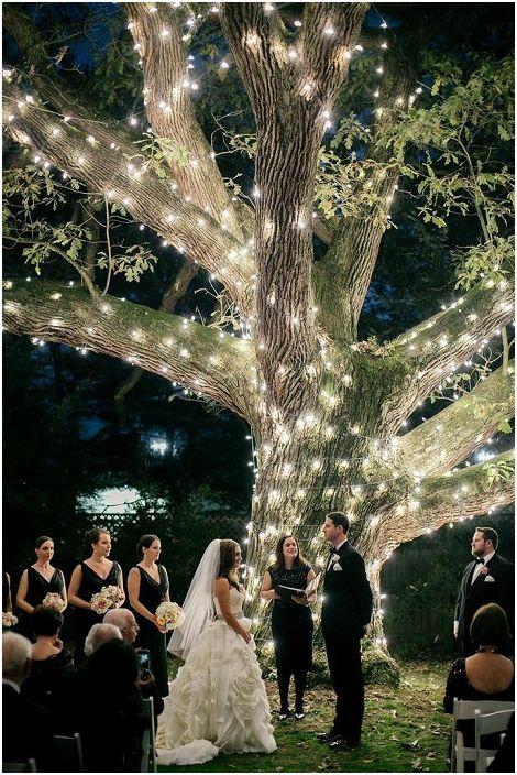 Хубав вариант да организирате сватба в близост до разкошно дърво, което е украсено със светлини.