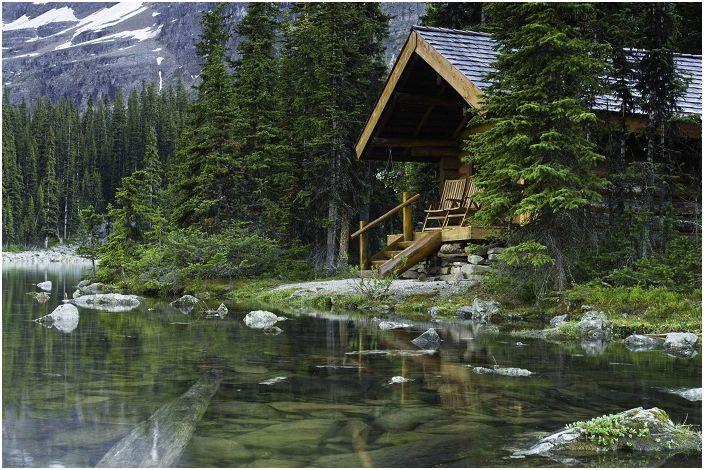 Des vues mignonnes et uniques sur la forêt qui entourent le chalet et créent une atmosphère spéciale et détendue.