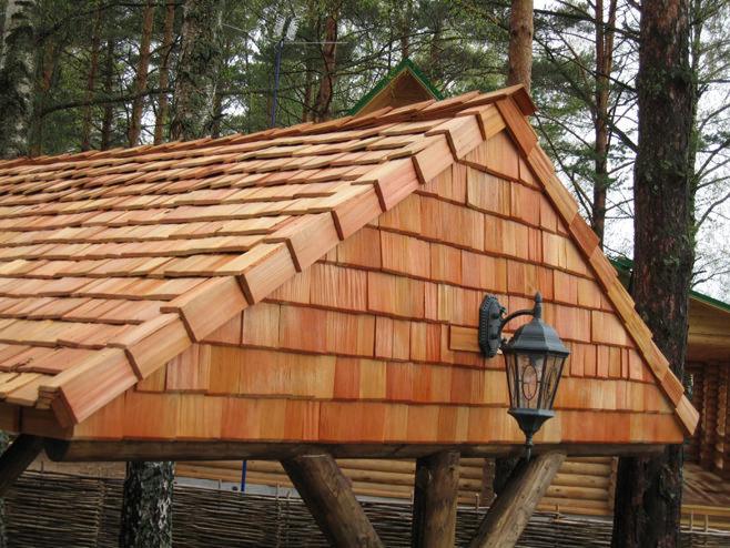 Дървени херпес зостер