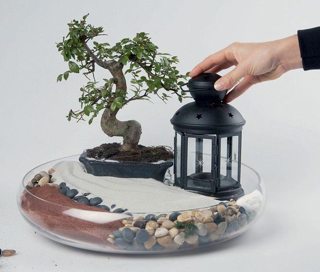 градина в миниатюра