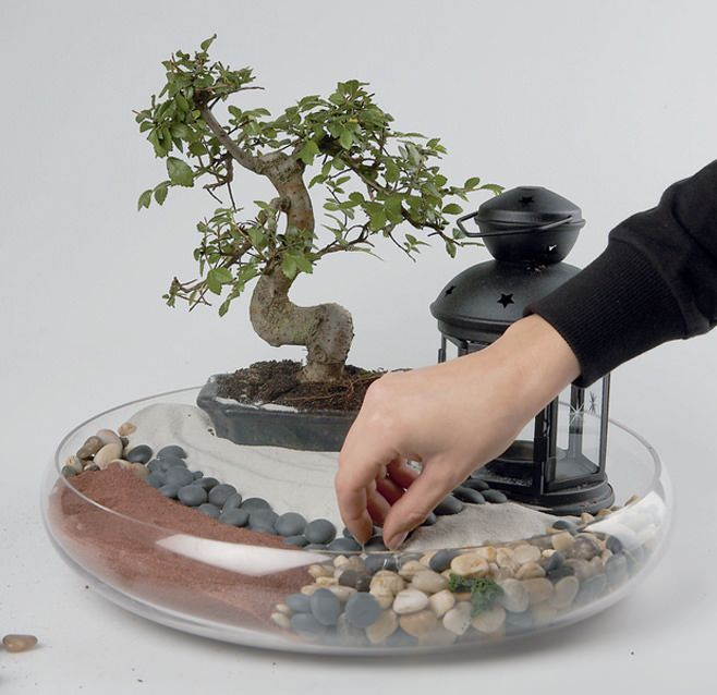 DIY mini jardin
