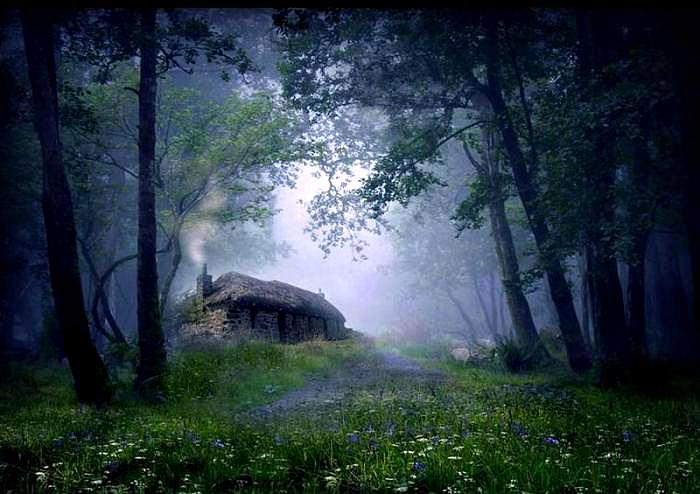 Kamienna chata w lesie.