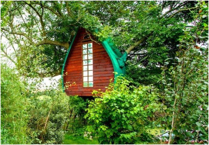 Tree Sparrow House to domek na drzewie.