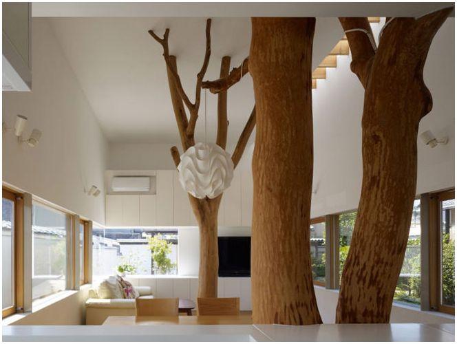 дървета вътре в къщата
