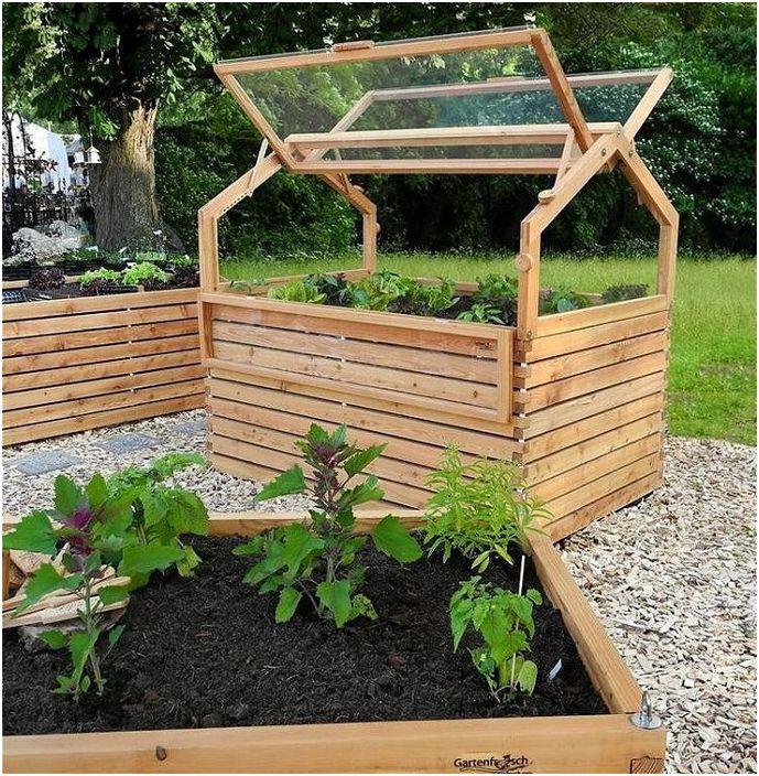 Оранжерия в градината със собствените си ръце, което ще ви позволи да получите желаната реколта през цялата година.