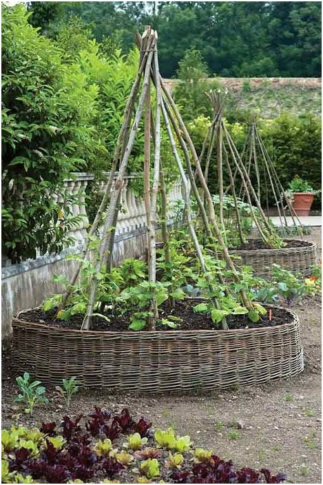Необичайна повдигната градина за катерене на цветя и зеленчуци.