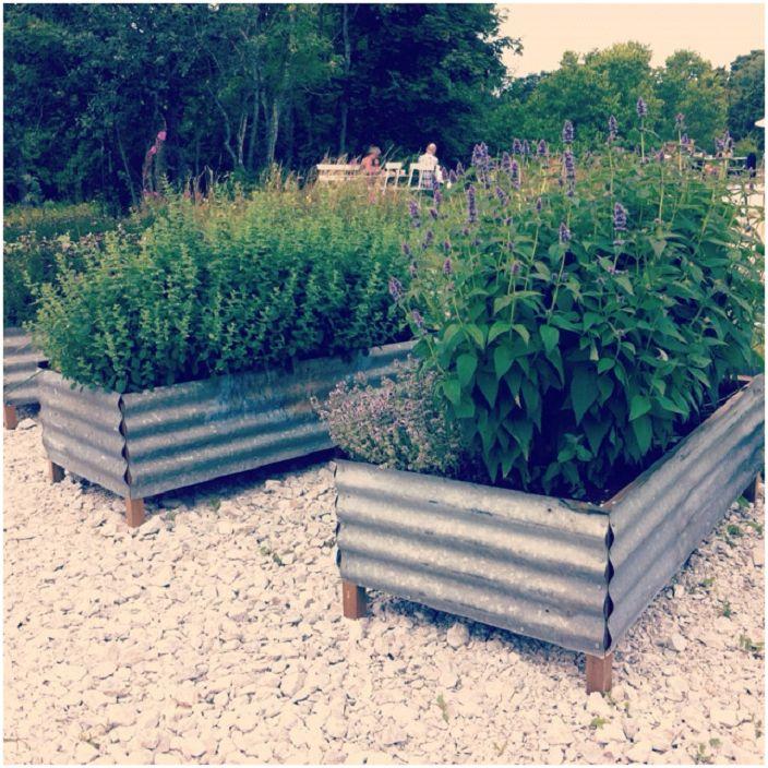 Дървените контейнери са обвити с метал - идеални за украса на зеленчукова градина.