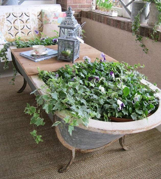 Старинная ванна используется как большой горшок для цветов.