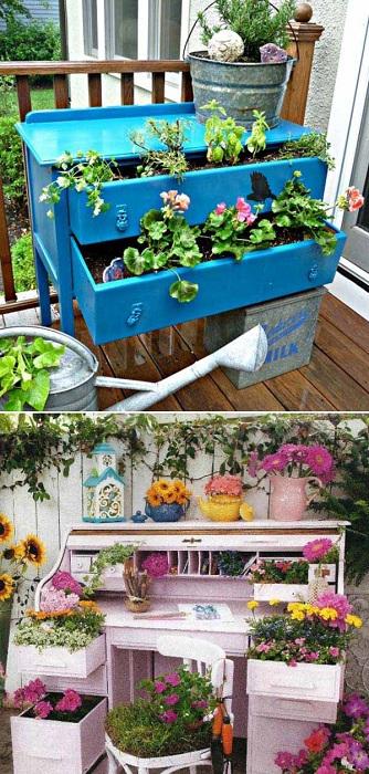 Комод или же старинный письменный стол отличный вариант для посадки цветов.