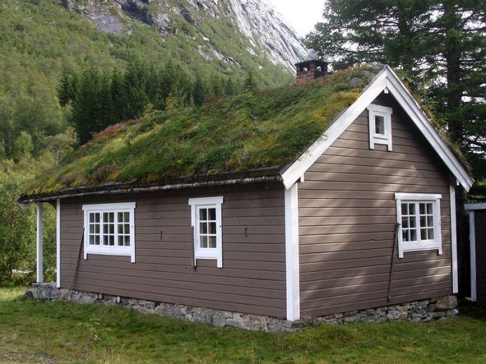 озеленяване на покрива в скандинавска селска къща