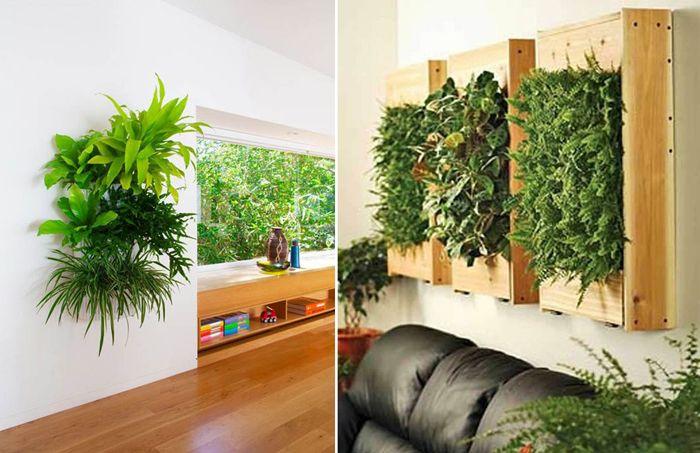 Как да украсите интериора с растения във висящи саксии.